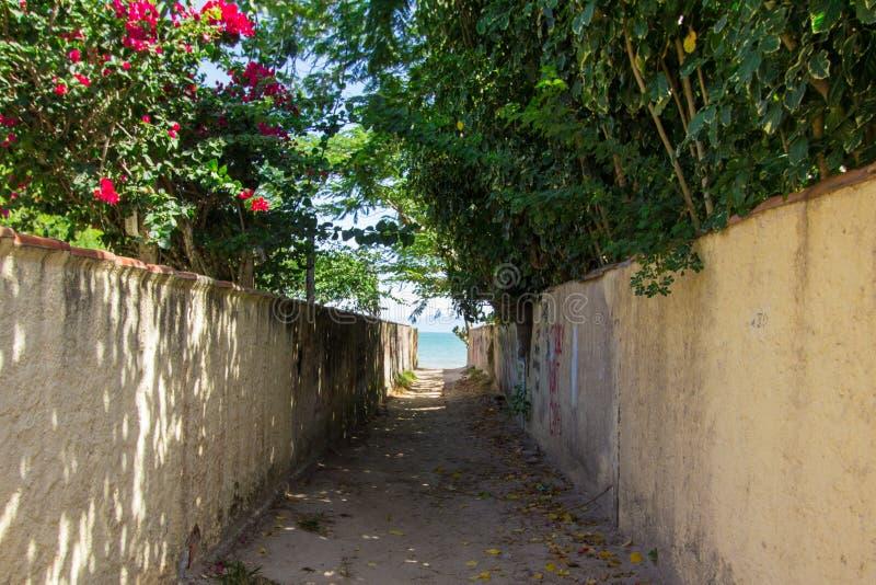通往海的道路 免版税库存图片