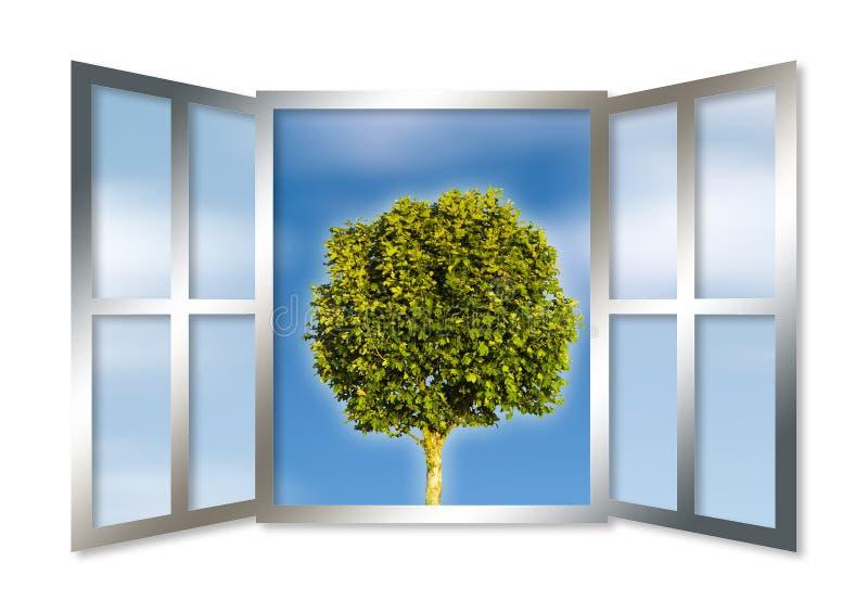 通过一个开窗口被看见的一棵唯一树 皇族释放例证
