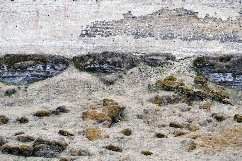 通过到地面的古老堡垒墙壁报道用春天草和青苔 库存照片