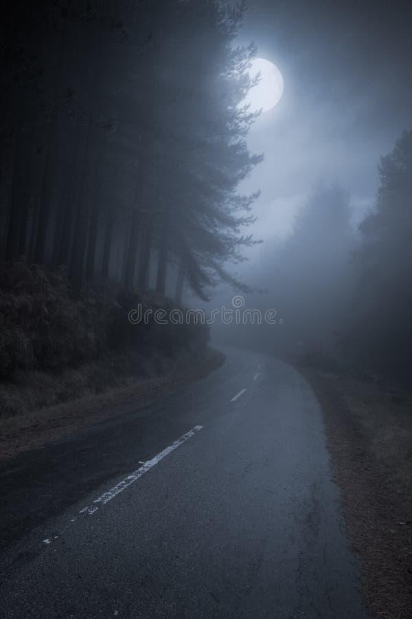 山路在晚上 库存照片
