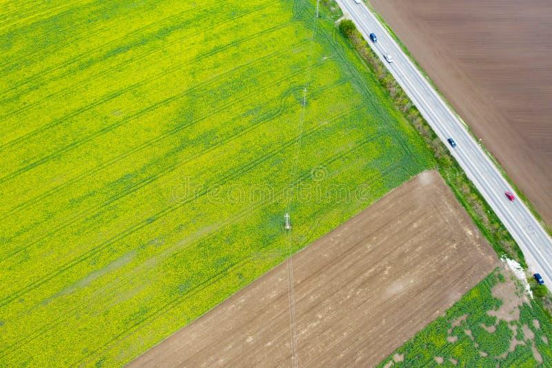 通过培养的春天领域的路 库存图片