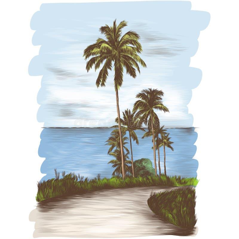 通过有棕榈树的热带使路环境美化在海背景一边 向量例证