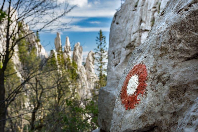 通过Dinarica与石灰石石峰的足迹标号在背景中 图库摄影
