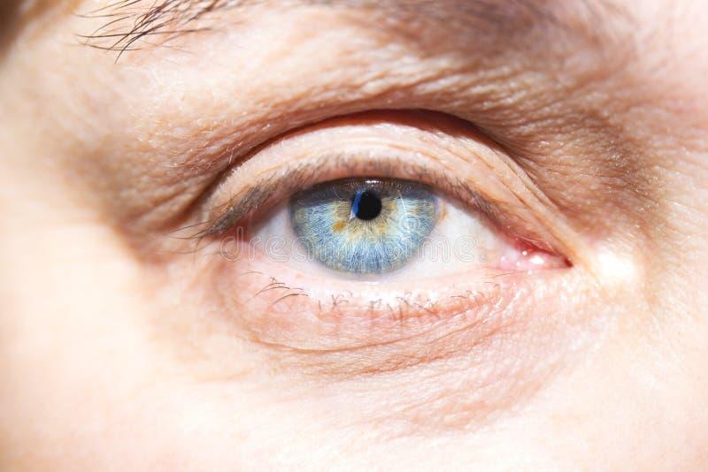 通透的神色眼睛 免版税库存照片