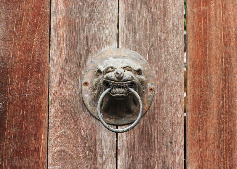 通道门环, A狮子在木板材老门的头门把 图库摄影