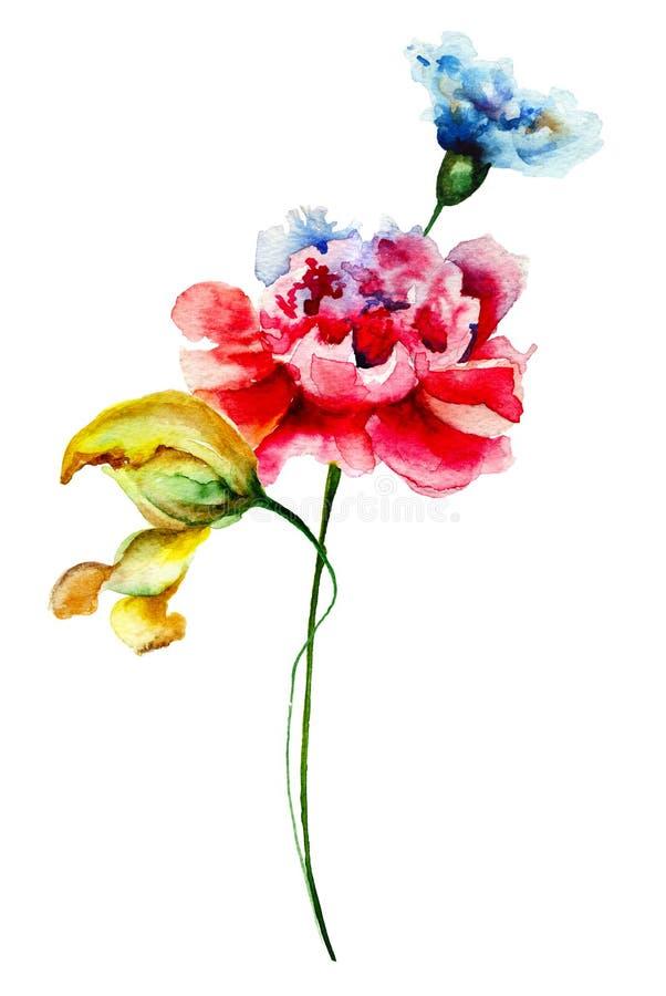 通配五颜六色的花 皇族释放例证