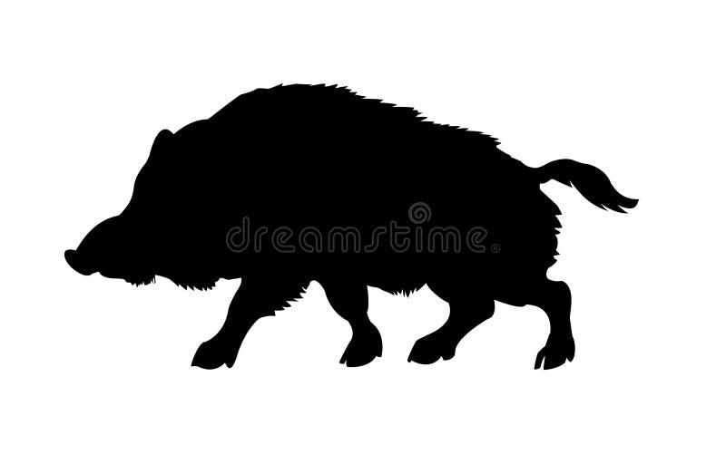 通配公猪的剪影 免版税库存图片