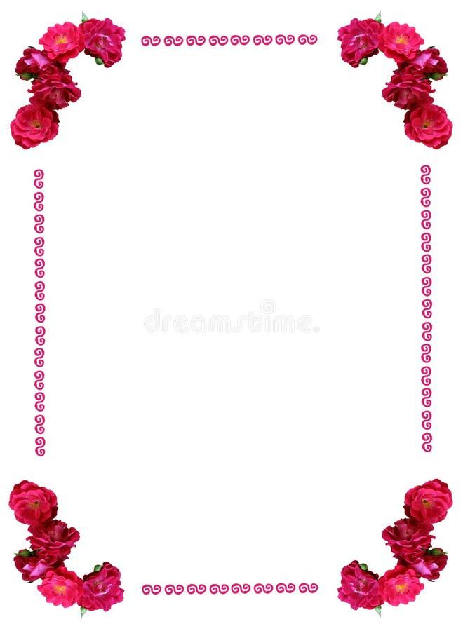 通配框架的玫瑰 库存照片