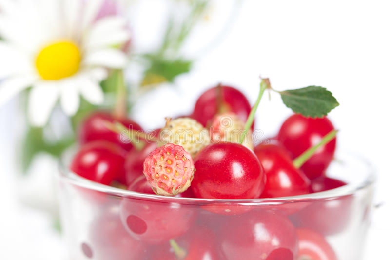 通配樱桃杯子玻璃的草莓 库存照片