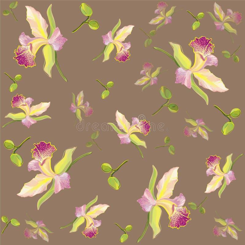 通配背景美丽的浆果构成dogrose时兴的花现代装饰品玫瑰无缝的纺织品的墙纸 皇族释放例证