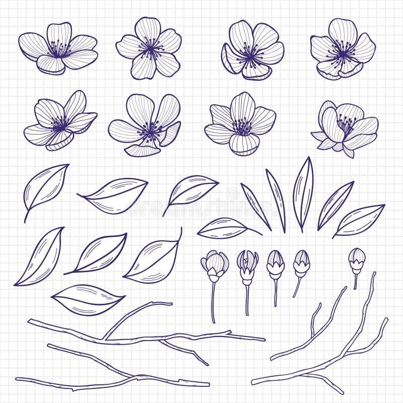 速写样式开花的樱桃或苹果树花、分支和叶子在笔记本页 手拉的春天元素 向量例证