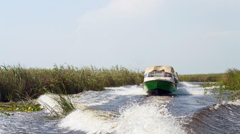 速度小船,多瑙河三角洲 库存图片