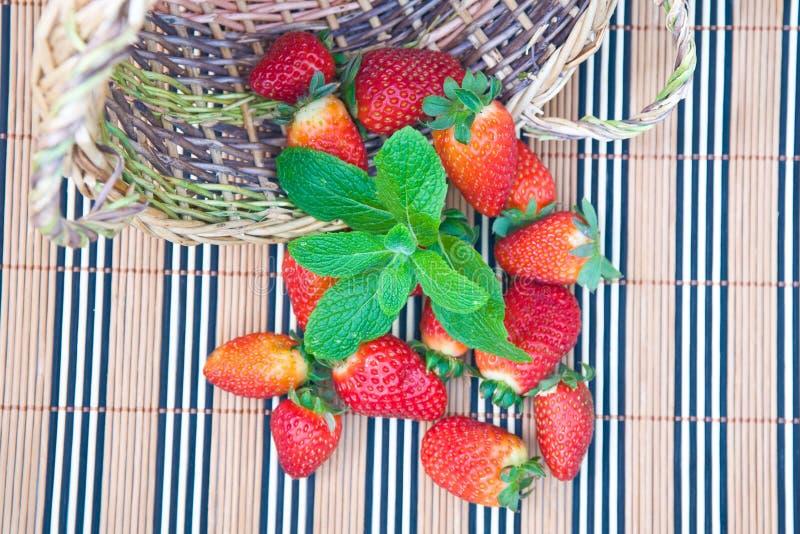 造币厂的草莓 库存图片