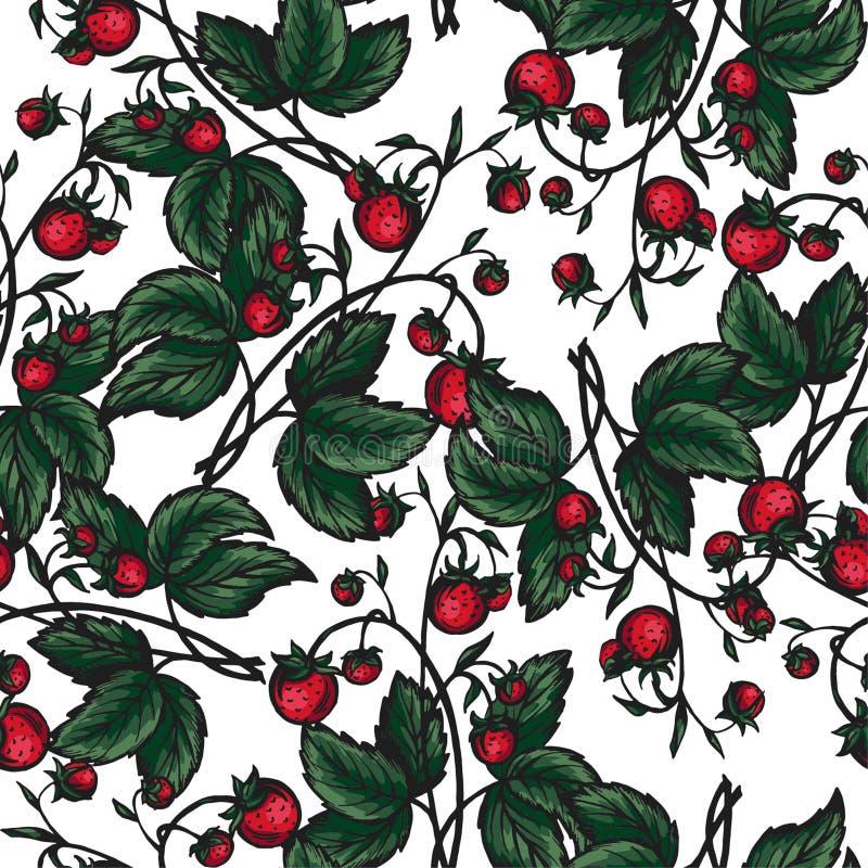 仿造无缝的草莓向量 免版税库存图片