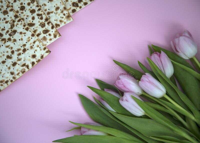 逾越节和郁金香花的MATZAH 免版税库存照片