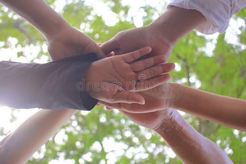 遇见配合概念,友谊,有显示在自然绿色背景的堆的小组人手团结 库存图片