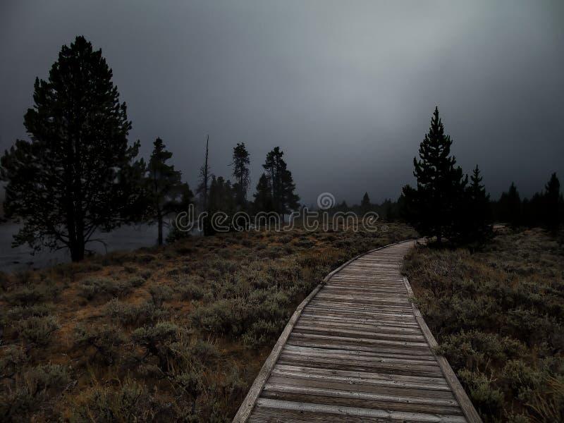 道路到黑暗里 库存图片