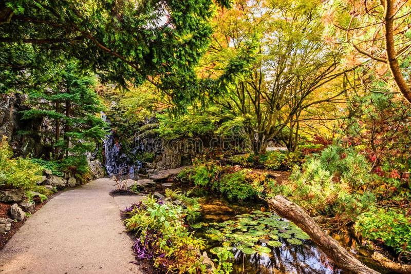 道路在一个池塘和瀑布之间的一个公园在一个石墙附近, 免版税库存照片