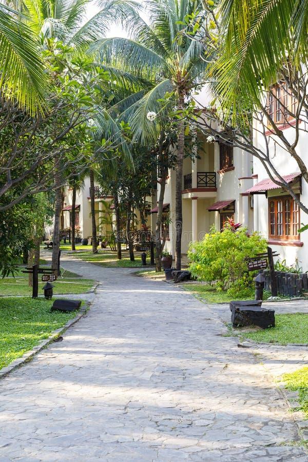 道路在棕榈树下在公园 库存图片