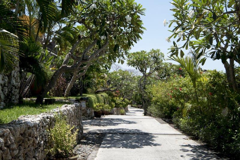 道路在美丽的庭院,巴厘岛里 免版税库存图片
