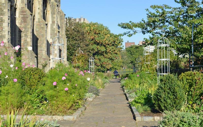 道路穿过一个美丽的庭院 免版税库存图片