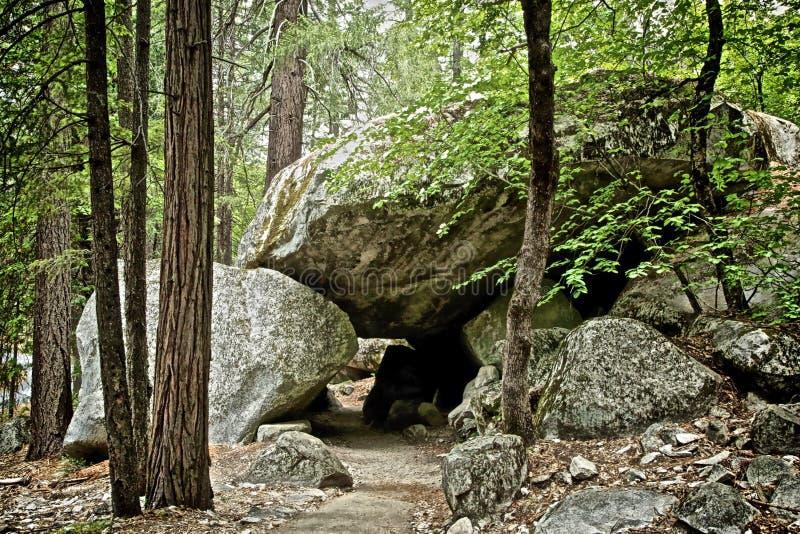 道路穿过优胜美地国家公园加利福尼亚 库存图片
