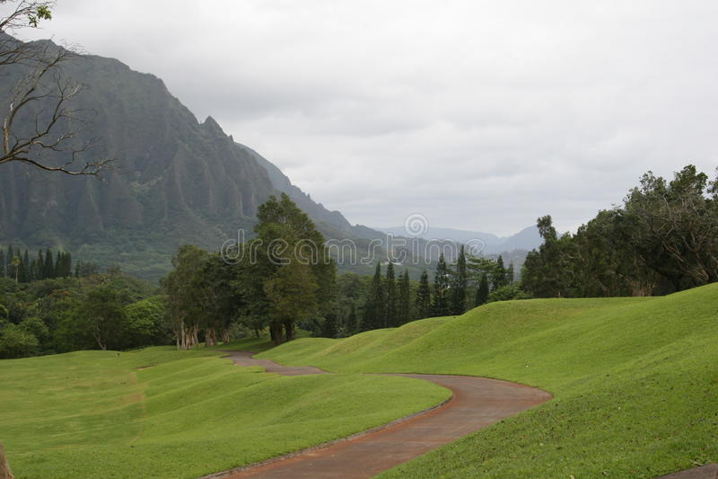 道路穿过往山的绵延山 免版税库存照片