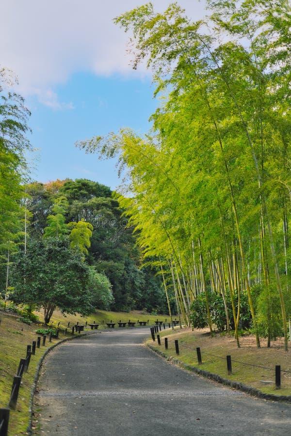 道路穿过竹子在商展'70纪念公园日本庭院里  库存图片