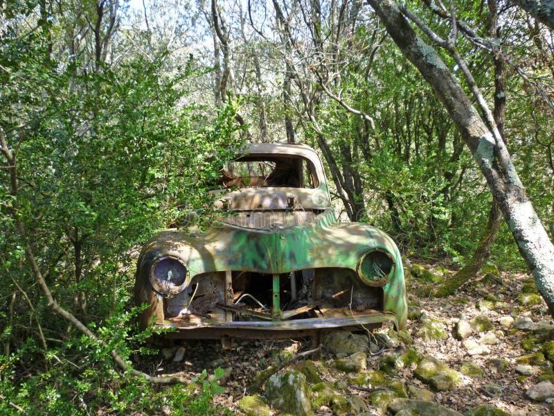 遗弃汽车在森林里 库存图片