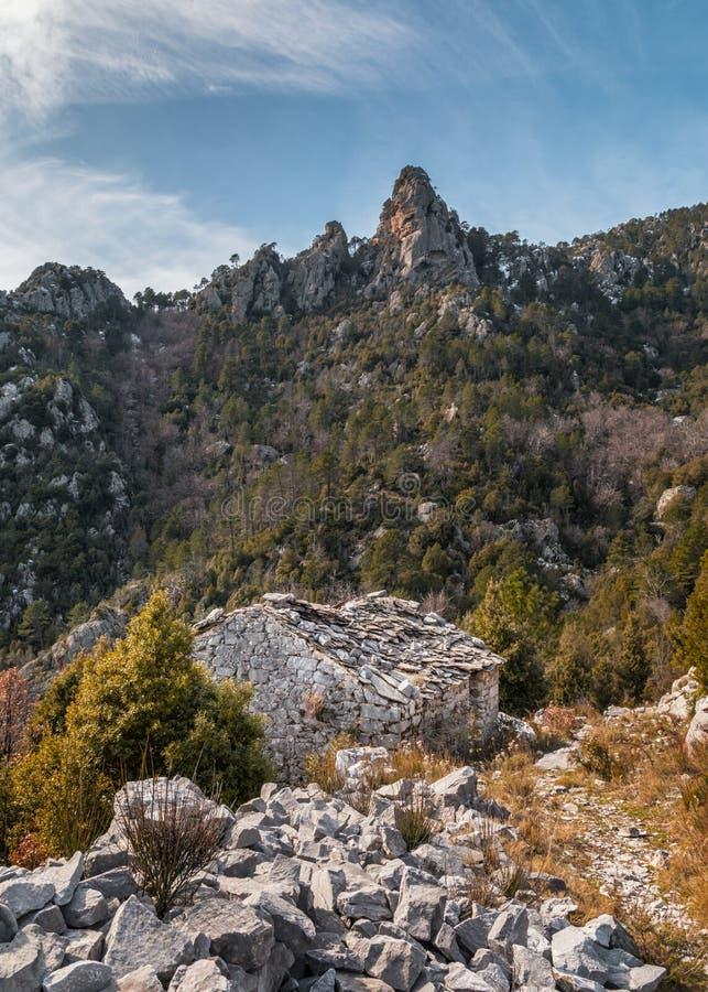 遗弃石buiding在Venaco附近的山在可西嘉岛 库存照片