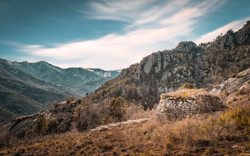 遗弃石buiding在Venaco附近的山在可西嘉岛 免版税图库摄影