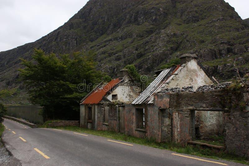 遗弃议院在沿主路的爱尔兰有在背景的树的 库存图片
