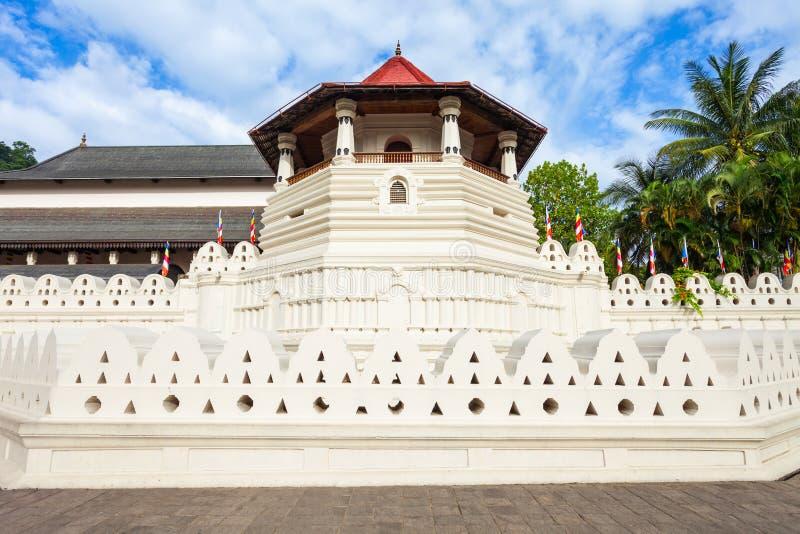 遗物神圣的寺庙牙 免版税图库摄影