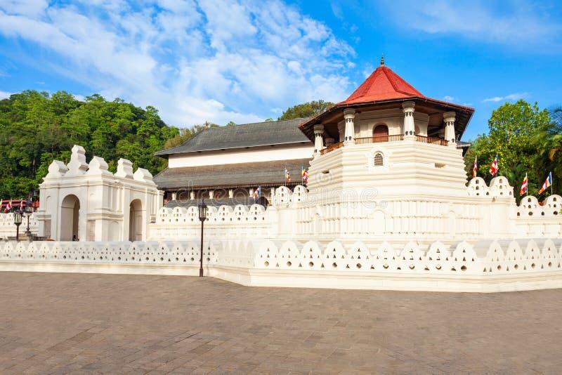 遗物神圣的寺庙牙 免版税库存图片