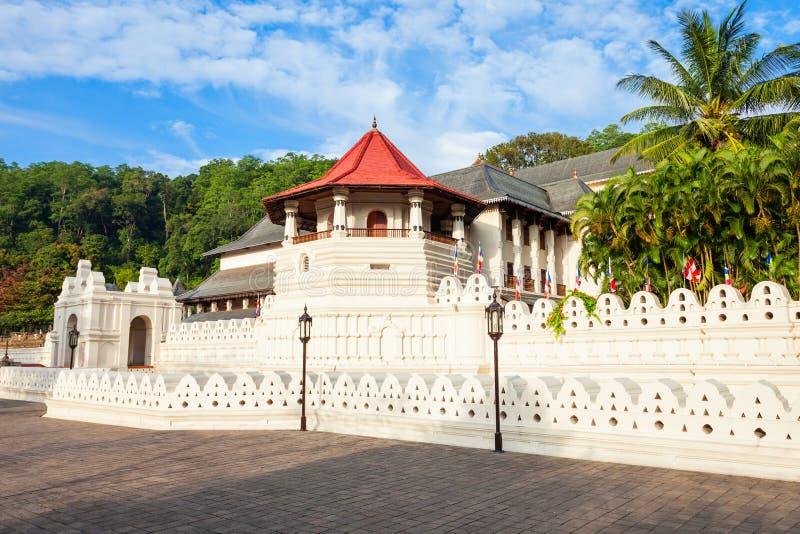遗物神圣的寺庙牙 图库摄影