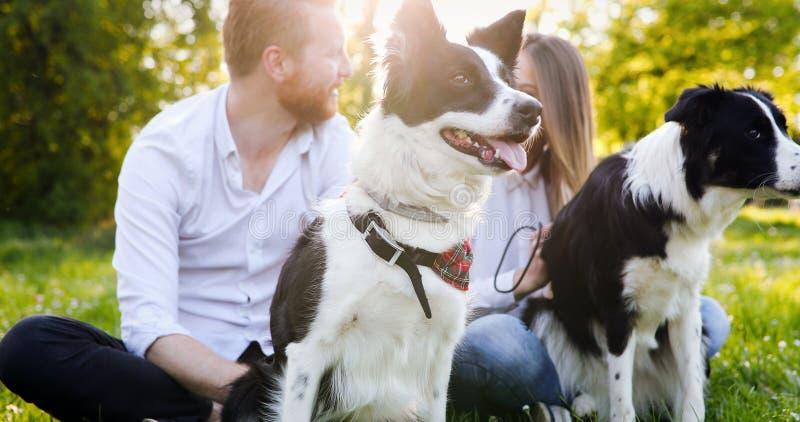 遛一对年轻的夫妇一条狗在公园 库存图片