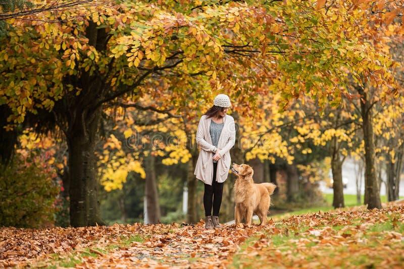 遛俏丽的妇女她的金毛猎犬狗在有Fal的一个公园 图库摄影