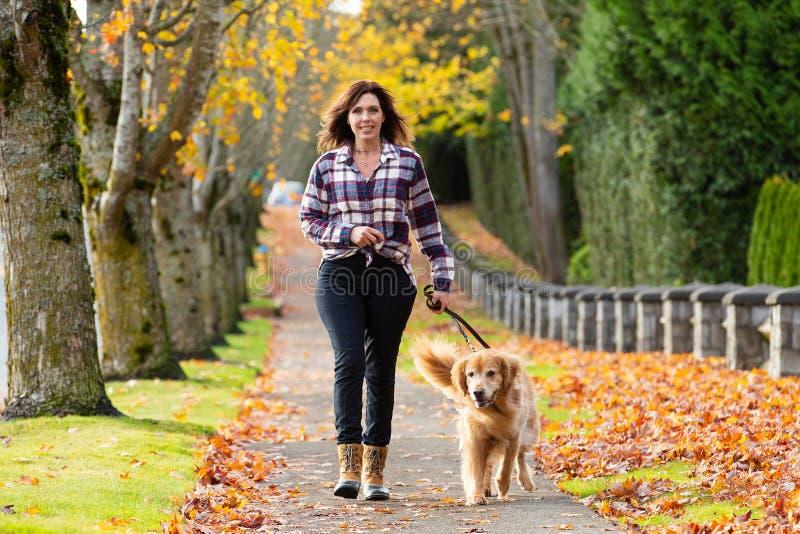 遛在秋天叶子的妇女金毛猎犬狗 免版税库存照片