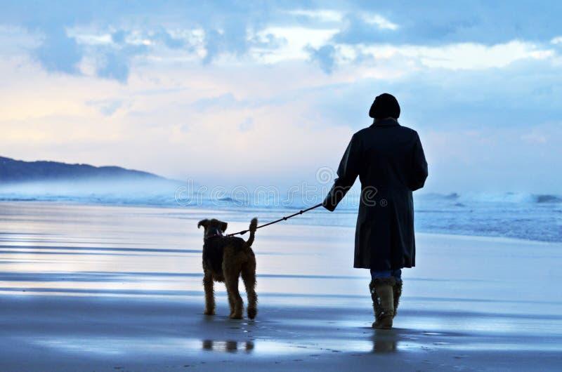 遛她的狗在离开的澳大利亚海滩的日落的妇女 库存照片