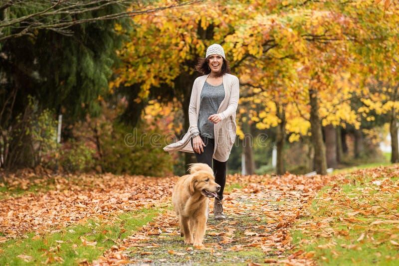 遛愉快的妇女她的金毛猎犬狗在有秋天的一个公园 库存照片