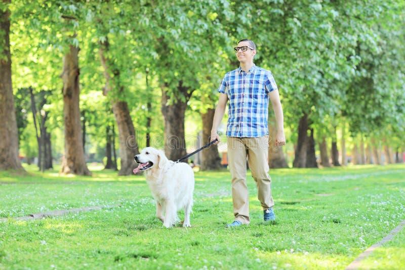遛年轻的人他的狗在公园 免版税库存图片