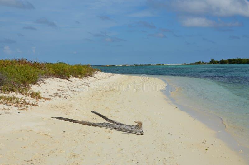 遥远的海滩 库存图片