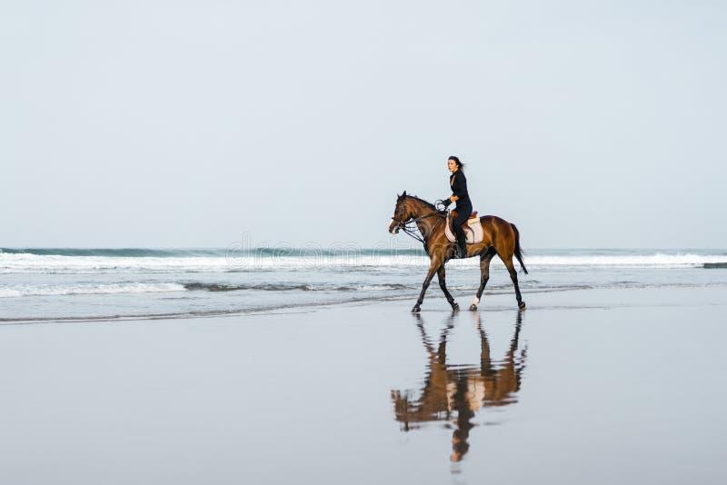 遥远的观点的妇女在沙滩的骑乘马 库存图片