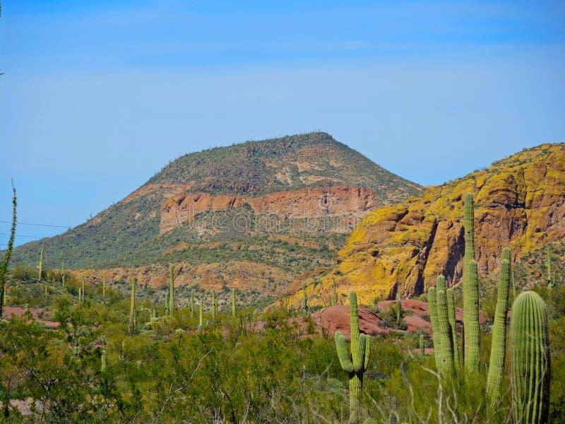 遥远的Mesa 免版税库存照片