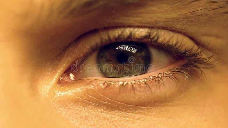 遭受干眼病综合症状,眼睛疲劳,眼科学,极端特写镜头的人 免版税图库摄影