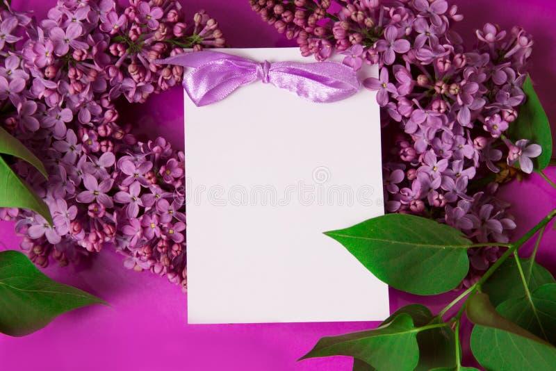 邀请淡紫色紫色 免版税库存照片