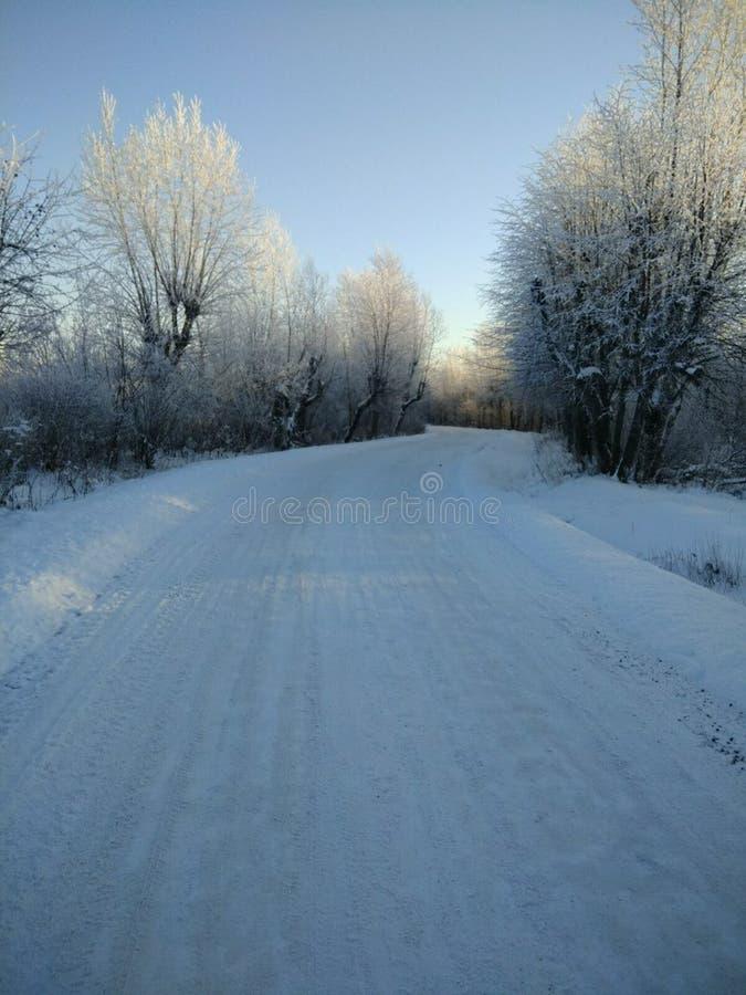 那么美妙的冬天 免版税图库摄影