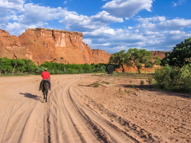那瓦伙族人印地安人在Canyon de Chelly谷乘坐  库存图片