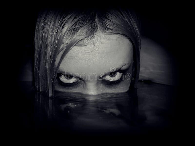 邪恶的美人鱼画象  库存图片