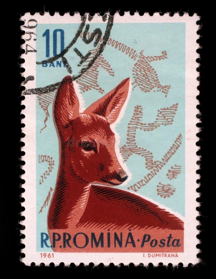 邮票由罗马尼亚、展示狍和青铜时代狩猎场面打印了 免版税库存照片